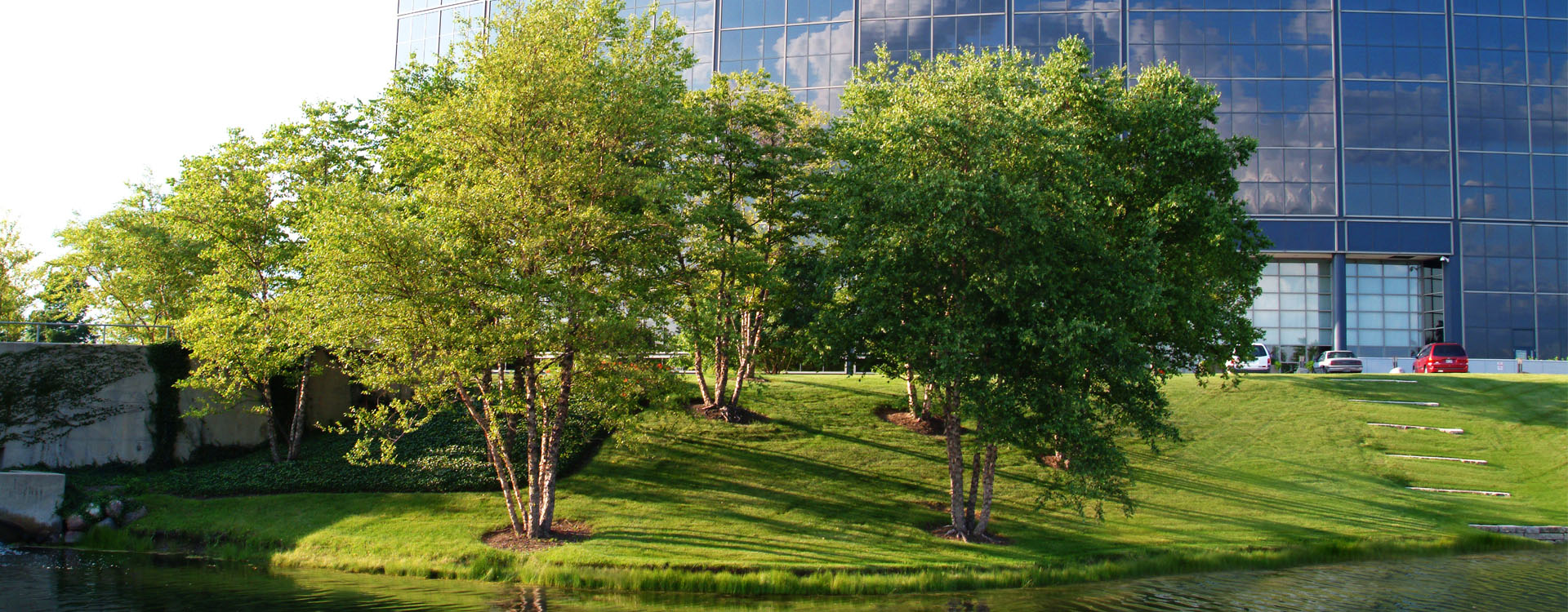 Landscaping Excellence, Creative Solutions, Quality Craftsmanship...